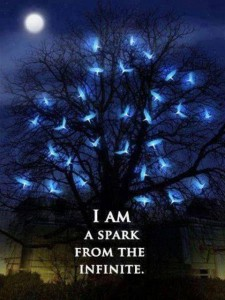 Thrive Light...