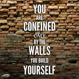 wallsyoubuildyourself